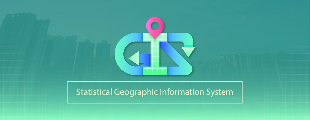 Statistical Geographic Information System